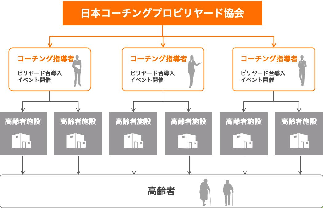 日本コーチングプロビリヤード協会の図式